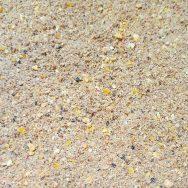 Grundfutter Brassen